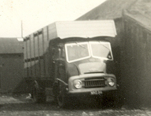 The first Austin lorry bought, included paintwork to match the colours of a Hereford Bull!